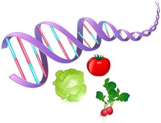 L'Epigenetica-01