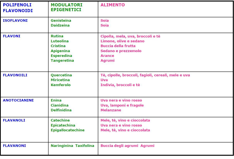L'Epigenetica-03