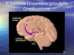 sistema dopa gratificazione