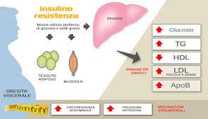 olio palma insulino resist.
