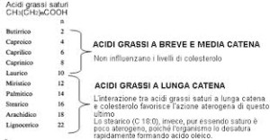 burro acidi grassi
