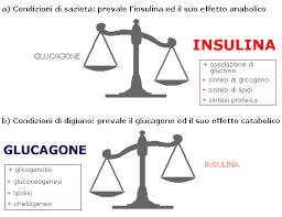 formaggio insulina e glucagoe