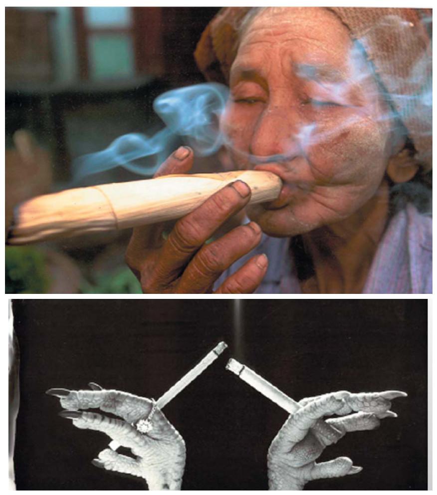 copertina-fumo