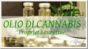 cannabis olio