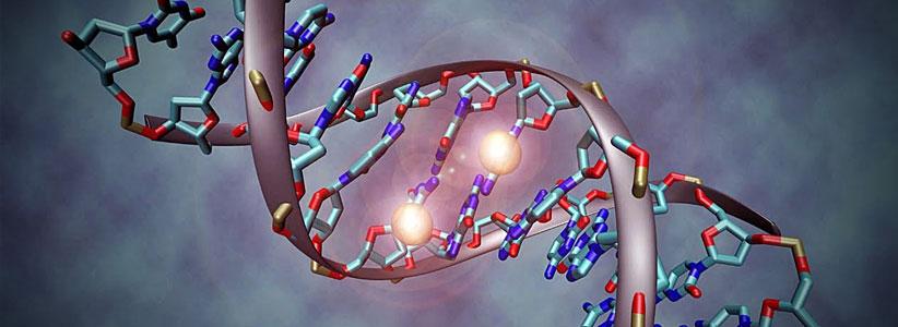 L'Epigenetica